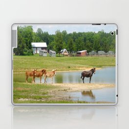 Horses Laptop & iPad Skin