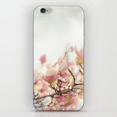 Blooming Magnolia iPhone & iPod Skin