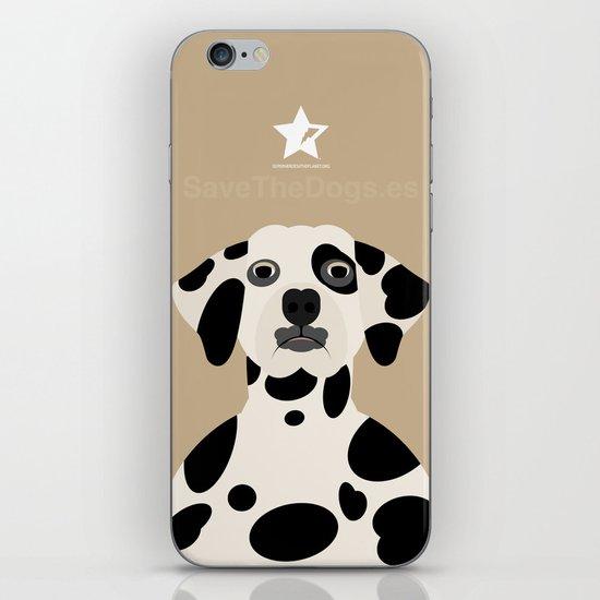 Dálmata iPhone & iPod Skin