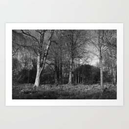 Early Spring in the Park II Art Print