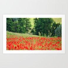 Poppy frenzy  Art Print