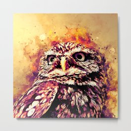 owl portrait 5 wslsh Metal Print