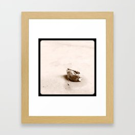Teabag'd. Framed Art Print