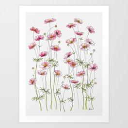 Pink Cosmos Flowers Art Print