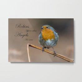 Angel Robin Metal Print