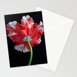 Red Parrot Tulip Stationery Cards