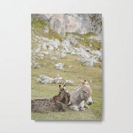 Cute donkey in Seceda, near Ortisei | Dolomites Italy travel photography Art Print Art Print Metal Print