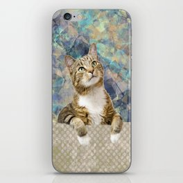 Soft Cat iPhone Skin