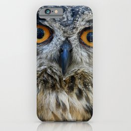 Handsome Eurasian Eagle Owl iPhone Case