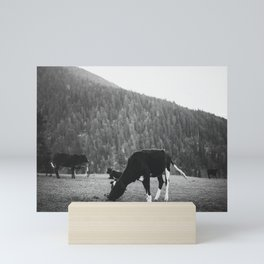 Grazing Cattle, Kashmir, India -2 Mini Art Print