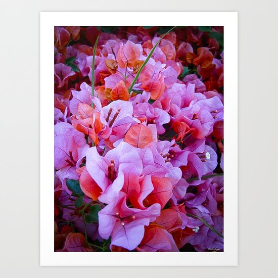 Scented Hill Art Print