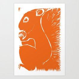 Squirell Art Print