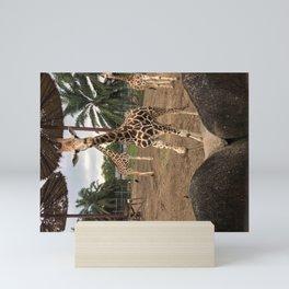 Cute giraffe in a zoo, Malaysia Mini Art Print