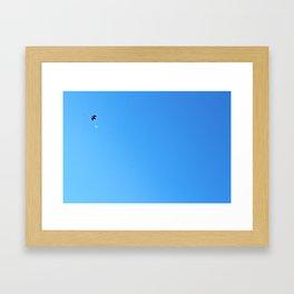 Bird Plane ONE Framed Art Print