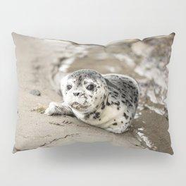 Baby Seal Pup On Sandy Beach Pillow Sham