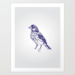 ROBINS SONG Art Print