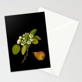 Pyrus Communis Mary Delany Vintage Botanical Floral Collage Delicate Paper Flowers Stationery Cards