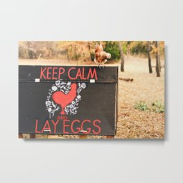 Keep Calm and Lay Eggs Metal Print