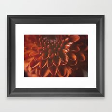 Red Burst Framed Art Print