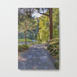 Autumn Sunlight Metal Print