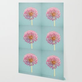 Pink Allium Wallpaper