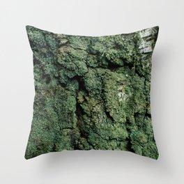 Mossy Birch Bark Throw Pillow