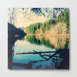 Lost Lake Love Metal Print