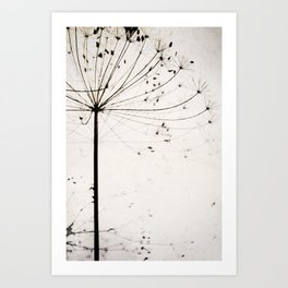 Herbstblume Art Print