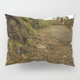 Caminos de Oregon Pillow Sham