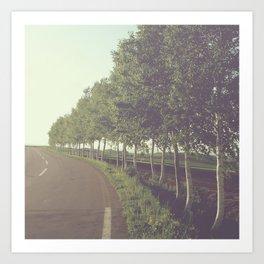 roadside trees Art Print