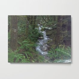 Stream out in the woods Metal Print