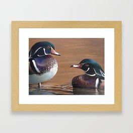 Wood Ducks Framed Art Print