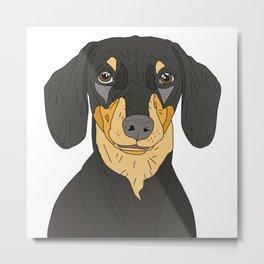 Dachshund Puppy Metal Print