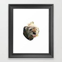 Bruno the Border Terrier Framed Art Print