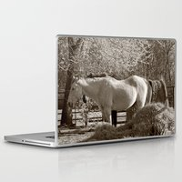 country Laptop & iPad Skins featuring Country by Christy Leigh