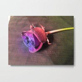 Rose #6 Metal Print
