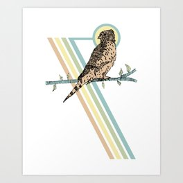 Mauritius Kestrel Falcon Art Print