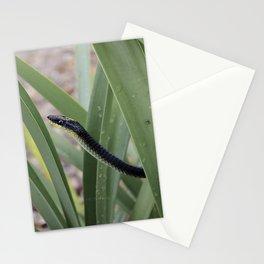 Snake. Stationery Cards