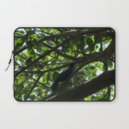 Great Tailed Grackle near Tulum Laptop Sleeve