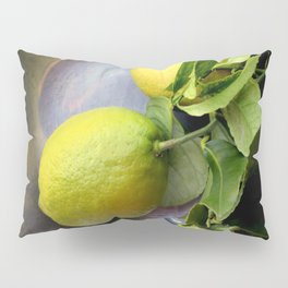 Pewter There Pillow Sham