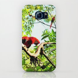 Endangered Trio of Scarlet Macaws iPhone Case