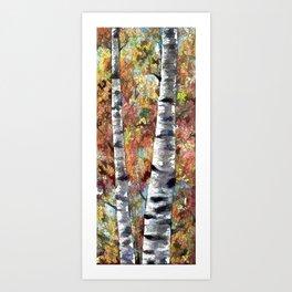 Aspen Trees Panorama Art Print