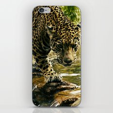 The life of Cartier iPhone & iPod Skin