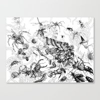 insects Canvas Prints featuring Insects by Emile Denis