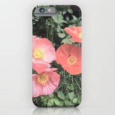 Papaveraceae iPhone 6s Slim Case