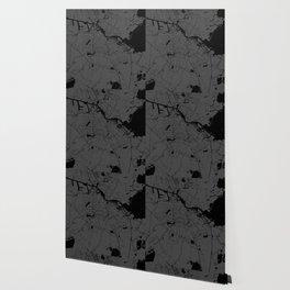 Amsterdam Gray on Black Street Map Wallpaper