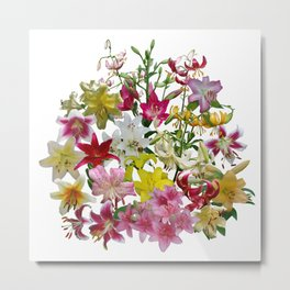 Lots of lilies to love! Metal Print