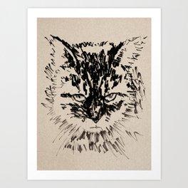 Mr Red's Catt Art Print