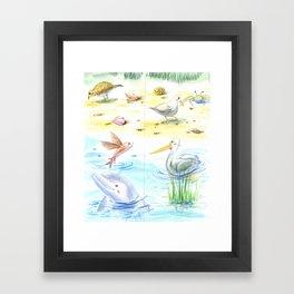 Sea Shore II Framed Art Print