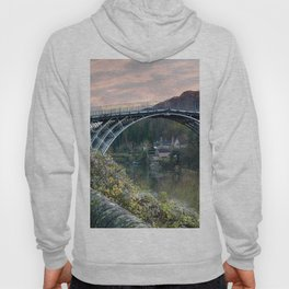 The Bridge across the Severn Gorge Hoody
